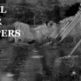 CfP: Borders, Boundaries, Territories: Creating and Reshaping Collective Identities